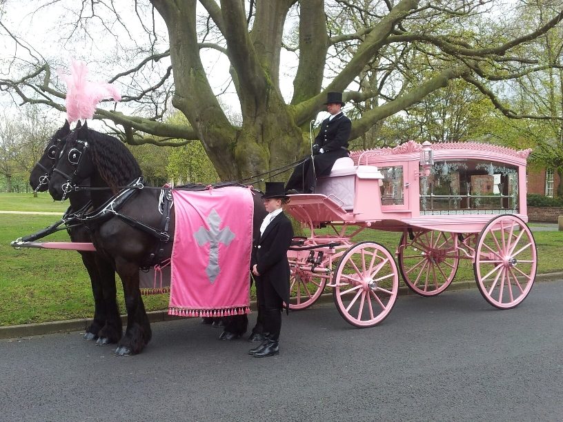 retro-horse-drawn-funeral-carriage